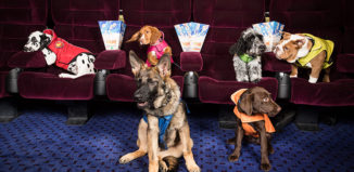 PAW Patrol dogs at cinema