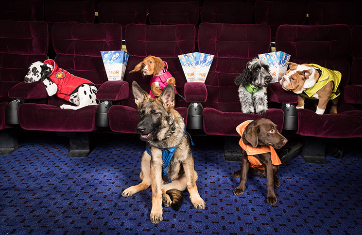 Paw Patrol characters come to life at dog Big Screen Takeover