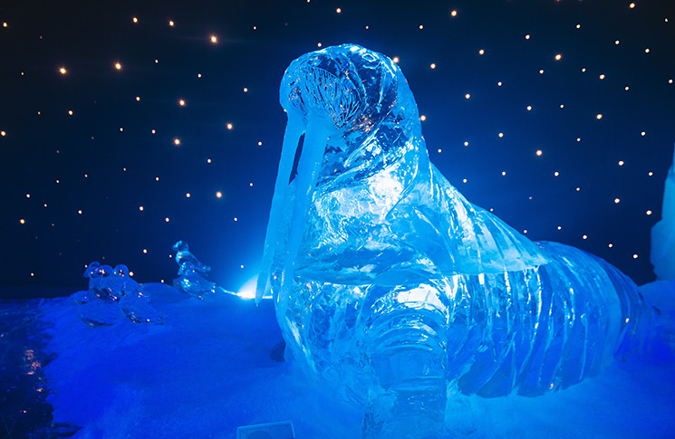 Magical-Ice-Kingdom-at-HPWW-2016_17-2