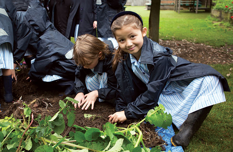Outdoor sessions encourage pupils to learn about growing vegetables and using them in cookery