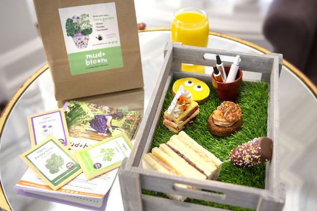 St Ermin's Mini Gardener Tea