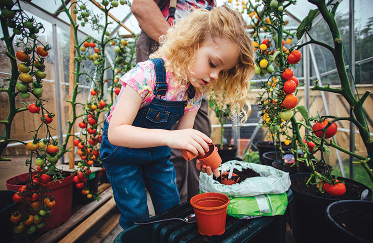 Five superfoods you can grow at home with the kids