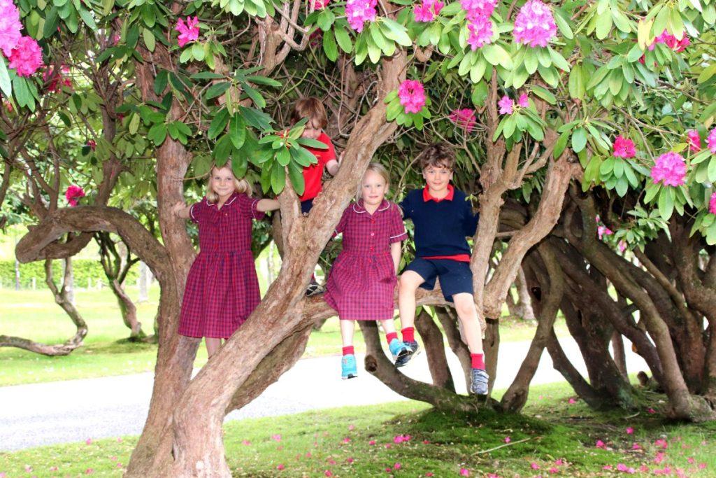 children-at-brookham-starting-school
